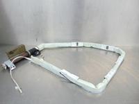 Image de Airbag rideau avant droite Renault Megane Scenic I Fase II de 1999 à 2003