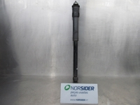 Picture of Rear Shock Absorber Left Smart Forfour de 2004 a 2007