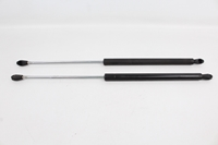 Picture of Tailgate Lifters (Pair) Citroen Ax de 1989 a 1997